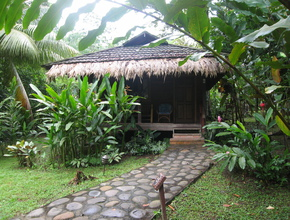 Guest cabin tucked away in the Caribbean coastal rainforest, Limon, Costa Rica