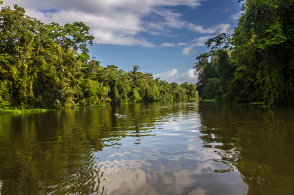 The sky reflects off the water at Tortuguero Lagoon on the Caribbean side of Costa Rica