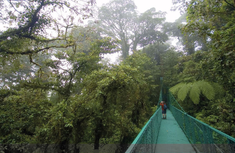 Hanging bridges in Costa Rica with Desafio.