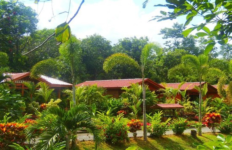 Beautiful cabins at Heliconias Nature Lodge.