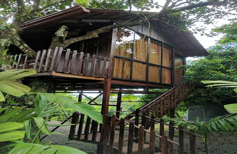 The best Arenal Costa Rica tree house cabins at Heliconias Nature Lodge.