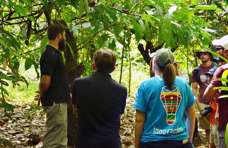Visit an amazing plantation!