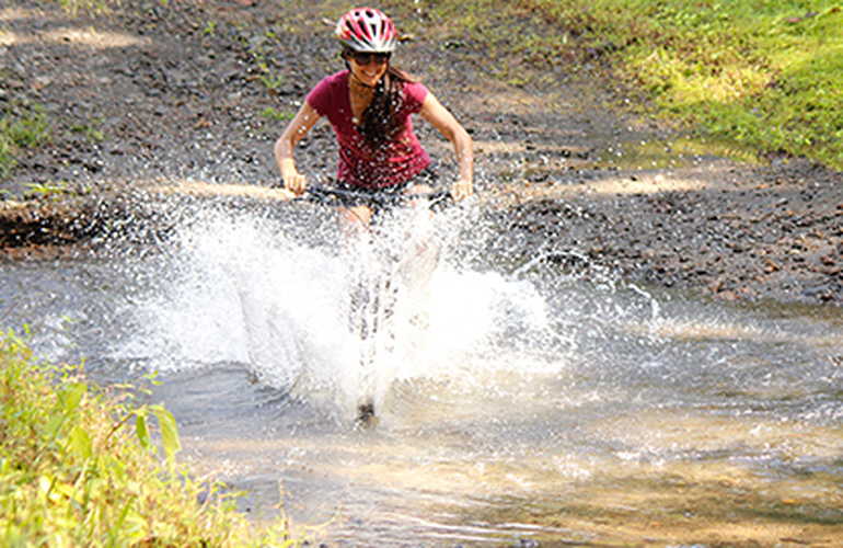 Thrash your way through mud puddles on the Desafio Single Track Madness private tour