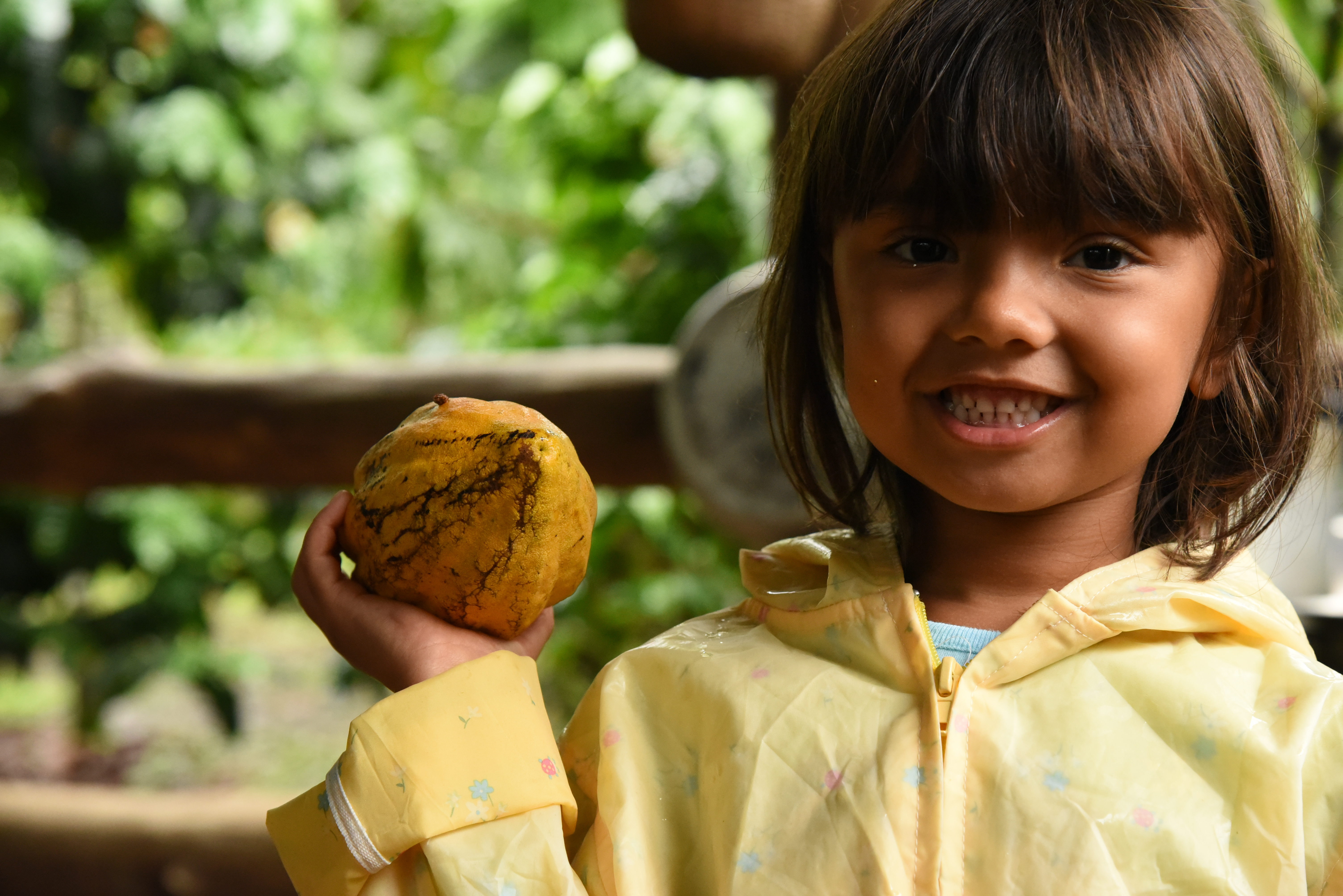 Learn about how to make chocolate from the cacao seeds in Cost Rica. Great tour for kids of all ages!