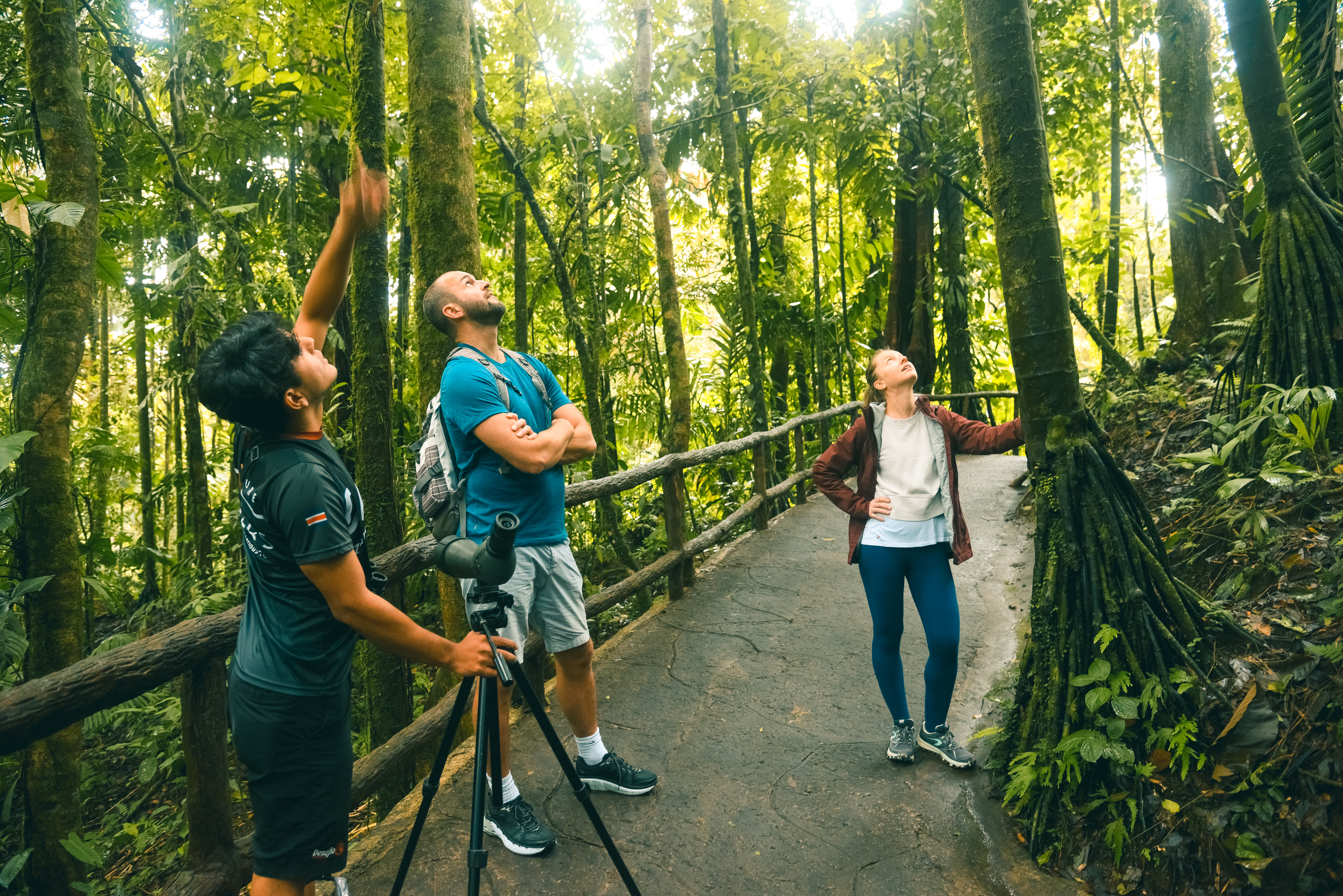 You like be amaze by all the Flora and Fauna in La Fortuna´s Rain Forest!