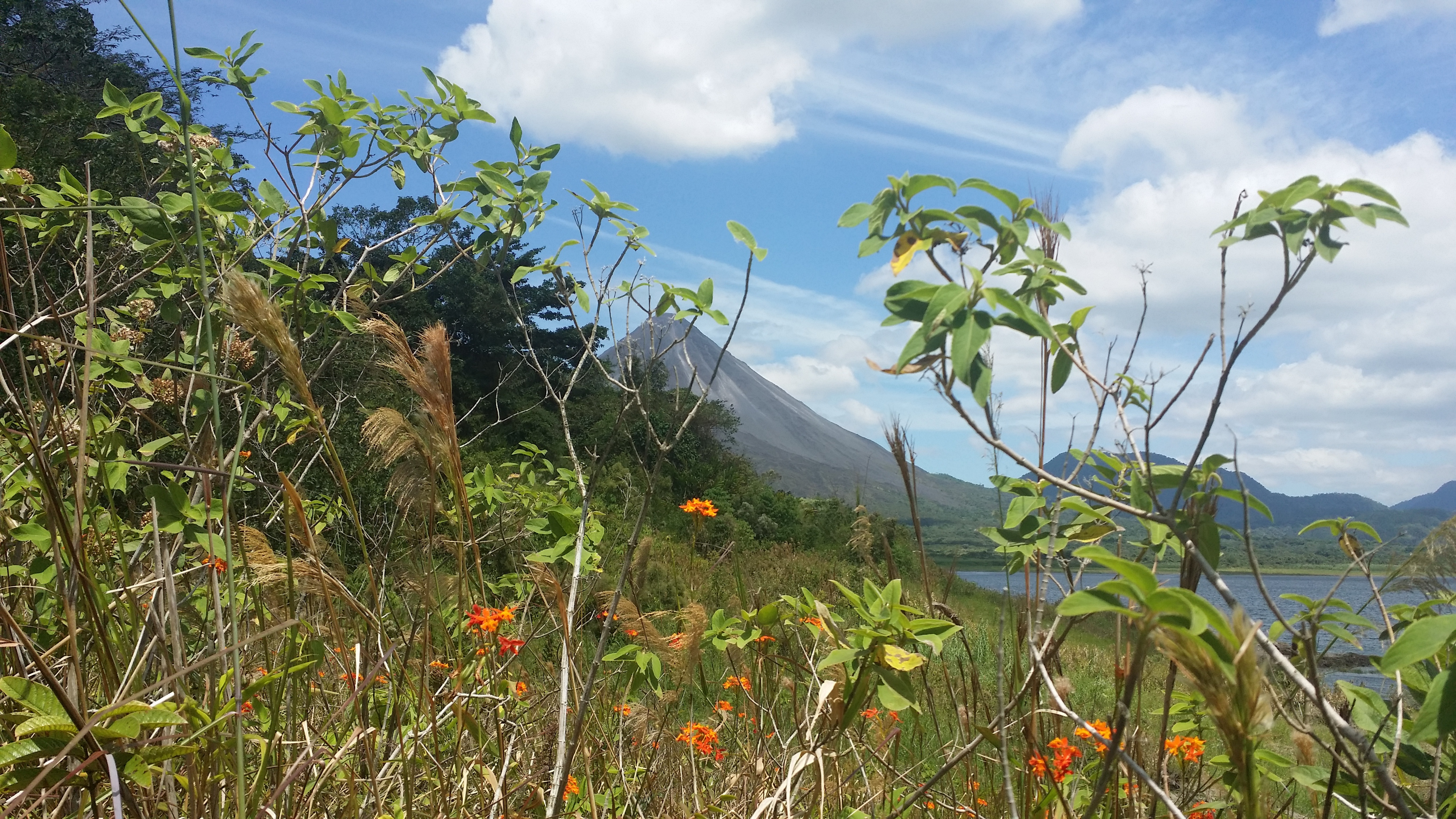 Great birding opportunities at Arenal Volcano National Park.