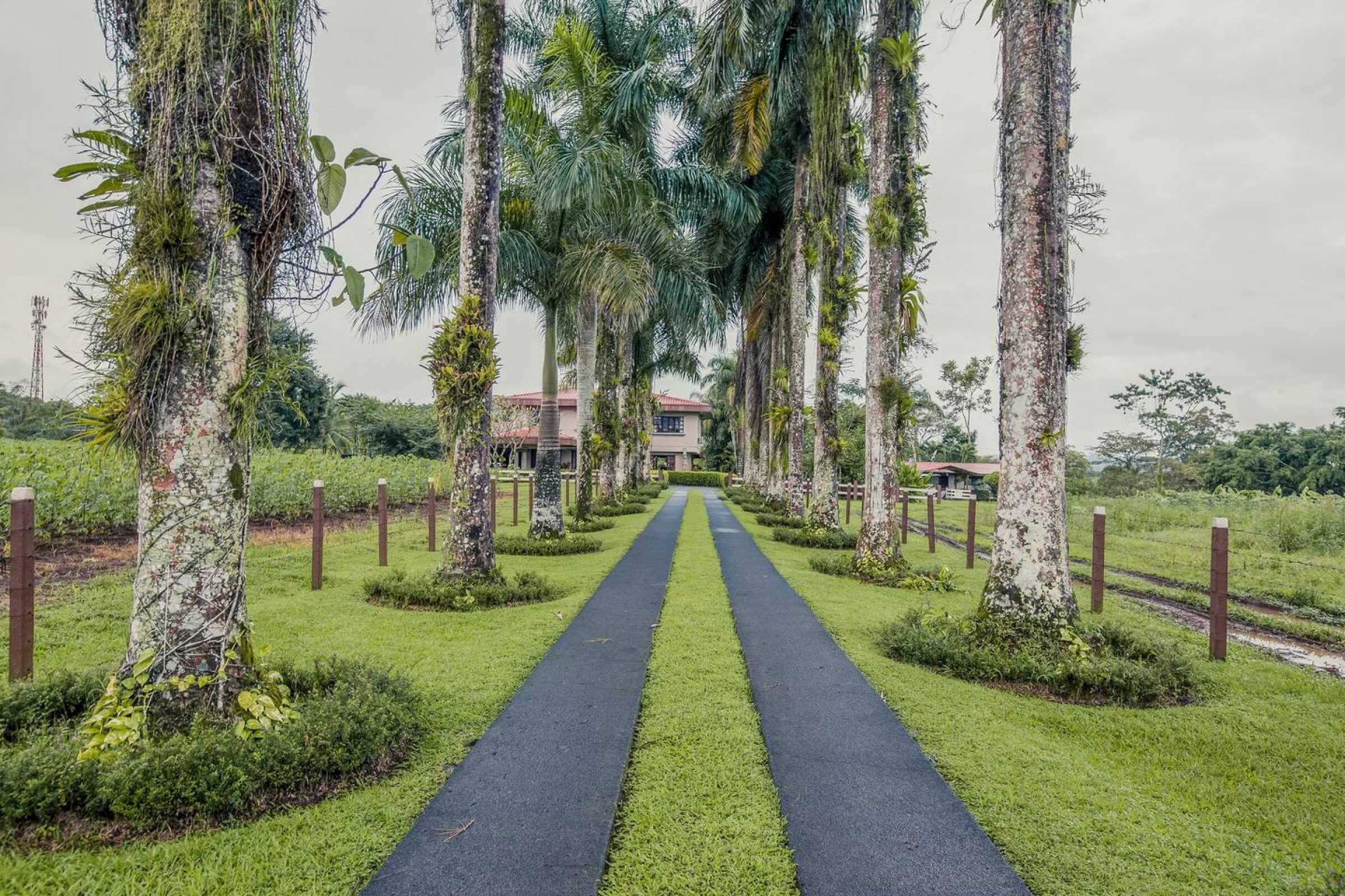 Luxury villa La Fortuna.