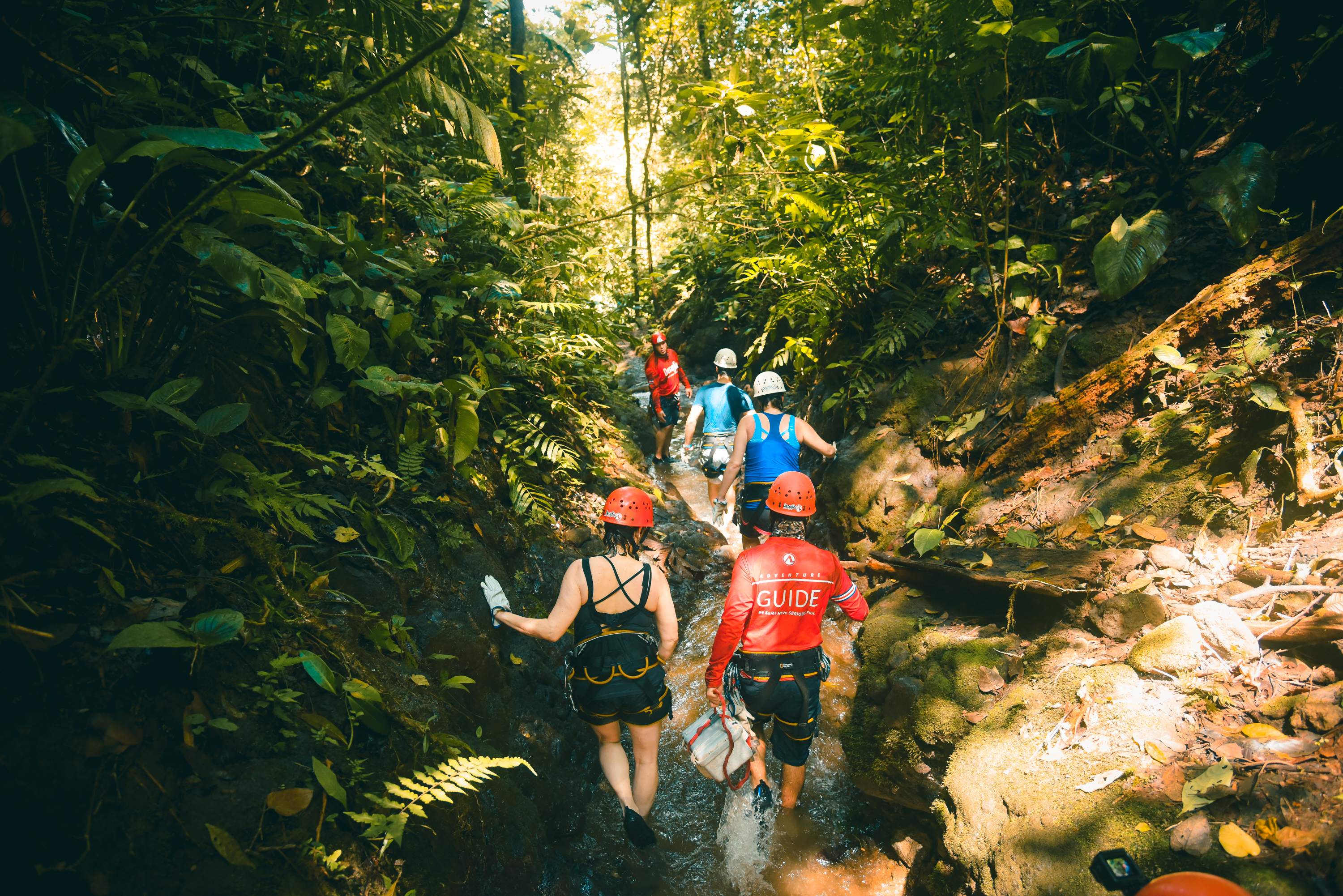 Go Hike along an amazing canyon deep in the rainforest of the Lost Canyon.