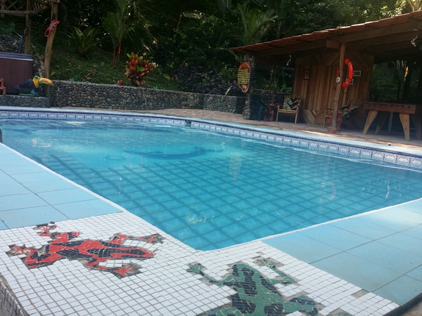 Blessed House near Puerto Viejo has a nice pool.