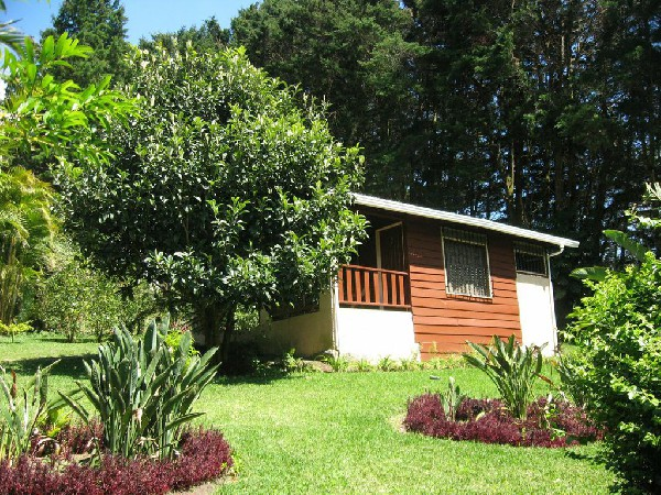 Private cabins feature garden and jungle views and offer lots of privacy at Los Pinos in Monteverde.