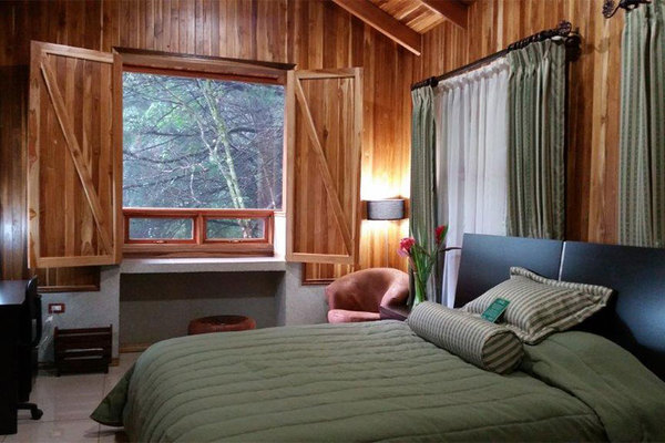 Cabins at Los Pinos feature comfortable beds, lots of space and large windows that let in natural light and allow you to enjoy the surrounding nature in the cloud forest.
