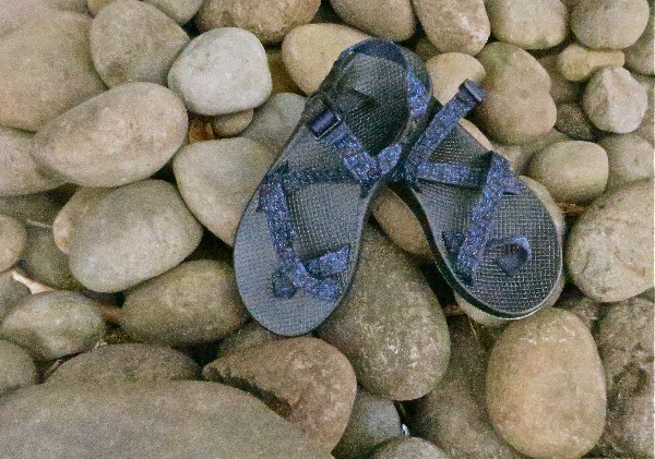 Chaco Z1 Unaweep Sandals