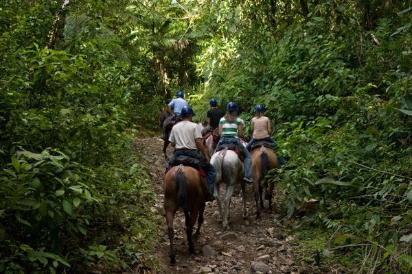 Horseback Ride in Guanacaste!