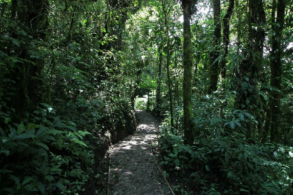 The Curi Cancha Reserve is a peaceful place to visit!