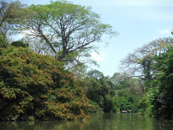 The best Guanacaste Day Tour Safari Float trip in Costa Rica!