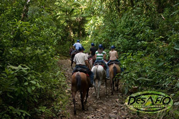 Nice trails cutting through the forest for horseback riding in Costa Rica.