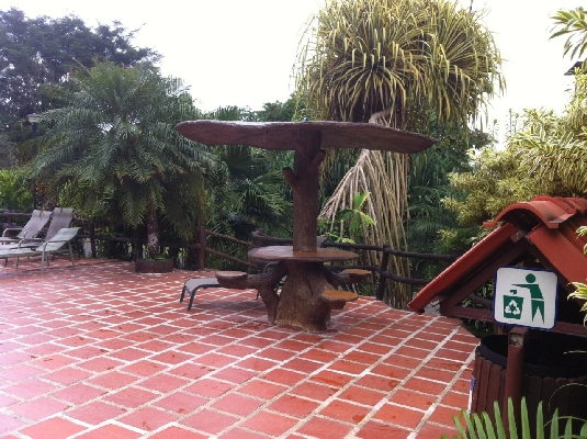 Cool all natural tree table at Los Lagos Resort and hot springs in La Fortuna, Costa Rica. Desafio can help you plan your perfect family vacation to Costa Rica!