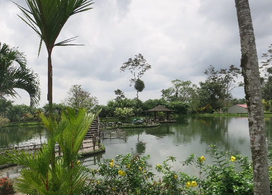 Hotel Los Lagos offers beautiful grounds and little lakes and is one of the best Costa Rica. Desafio can help you plan all of your Costa Rica adventures