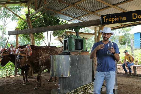 The knowledgable tour guide explaining the interesting process of making sugar cane juice.