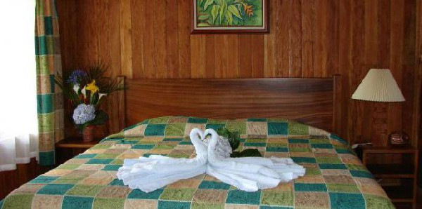 Fresh tropical flowers and wood paneling give rooms a comfortable feeling in the cloud forest in Monteverde.