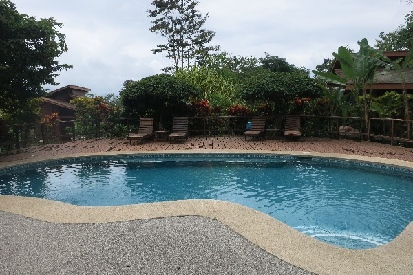 The refreshing cool swimming pool.