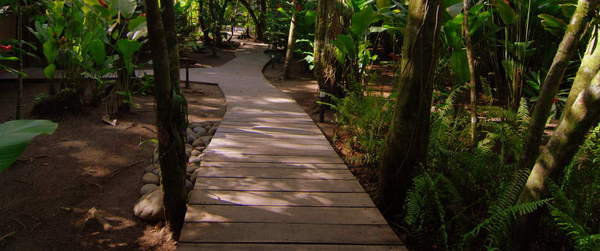 Nice walking trails at Turtle Beach Lodge Tortuguero.