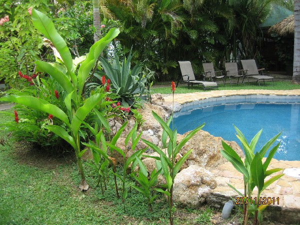 Tropical gardens and a refreshing pool for guests at Villa Kalimba in Playa Samara. Desafio can help you plan a fun Costa Rica vacation!