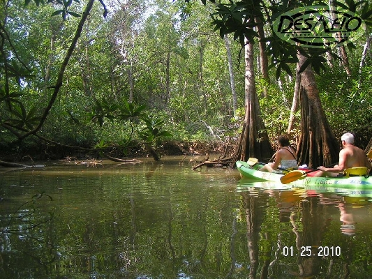 Kayak down the enchanting Ora River!