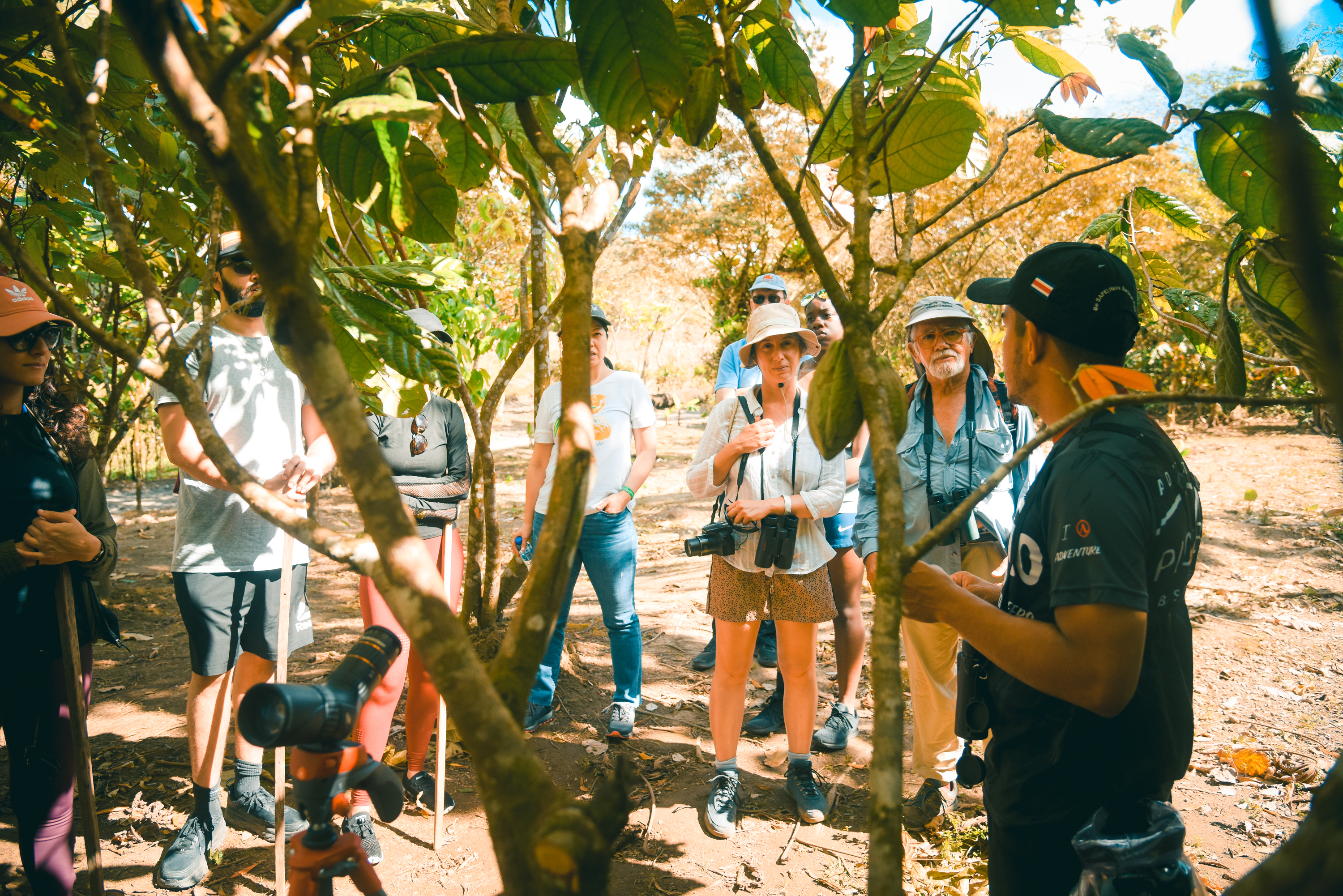 While hiking to the Arenal Volcano learn about our delicious Cacao!