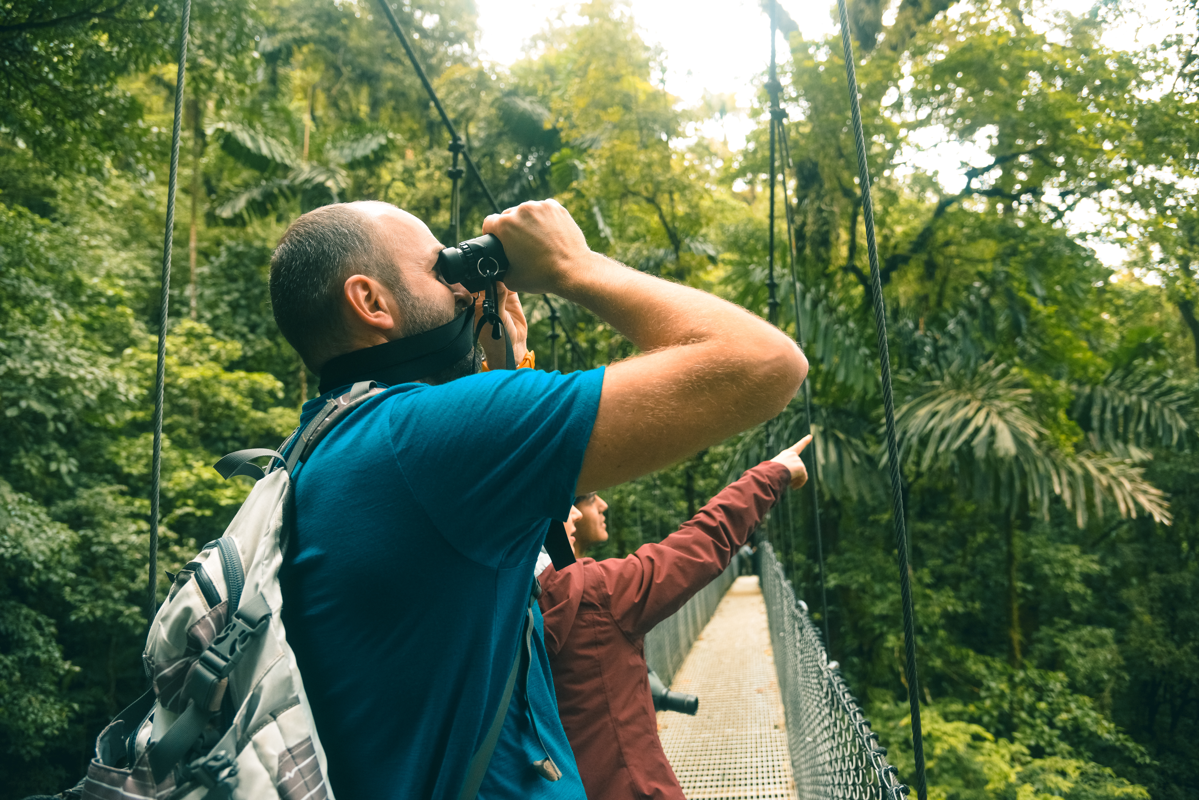 The expert eye of the guide will give you a valuable opportunity to appreciate the balance of the mystical life that happens at all times during the guided Hanging Bridges tour in La Fortuna Arenal Volcano.