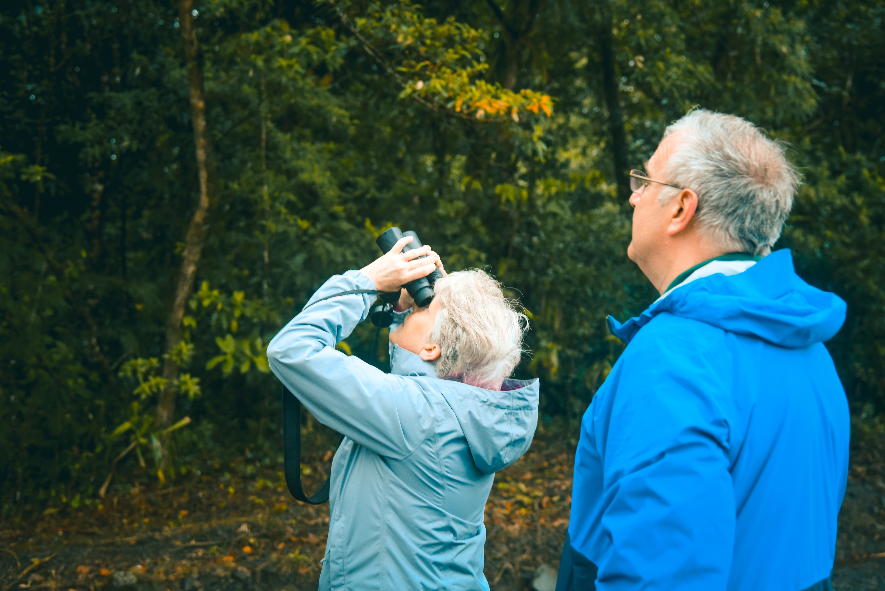 Explore the amazing surrounding for Bird watching near the Arenal Volcano!