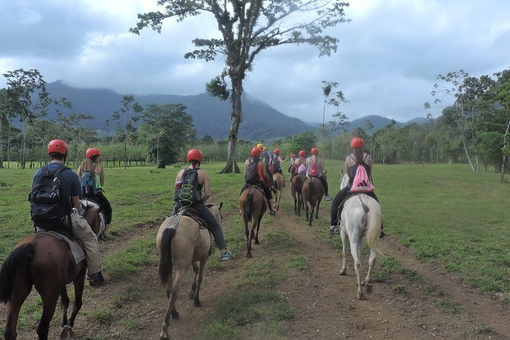 Take a nice horseback ride along the base of the Arenal Volcano on friendly horses.