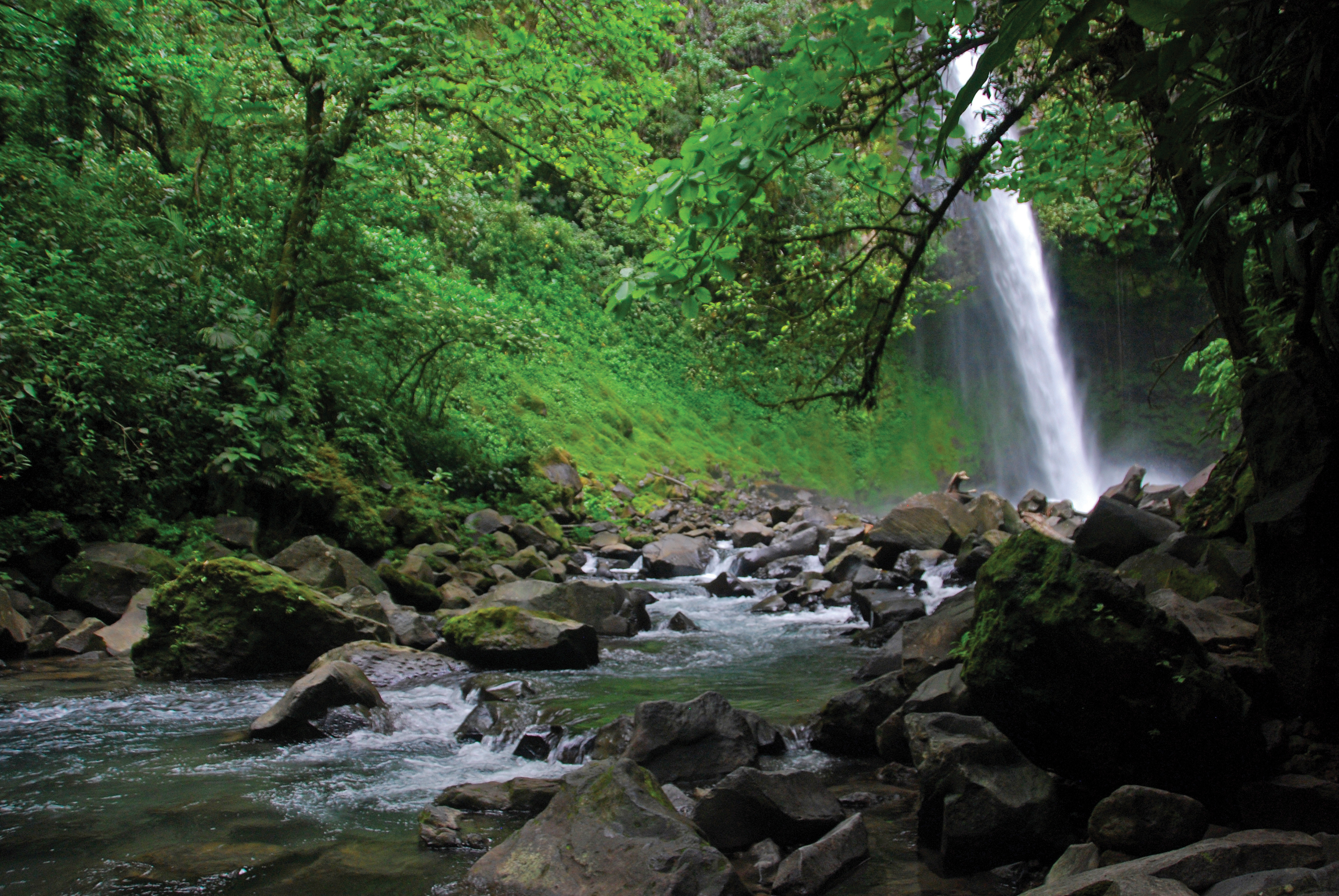 You will love the hike down to this waterfall near the town of La Fortuna because you can see all of the natural beauty of the rainforest Costa Rica