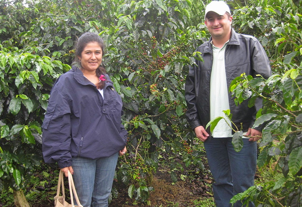 La Fortuna Arenal to Monteverde Boat Transfer Coffee Chocolate Tour