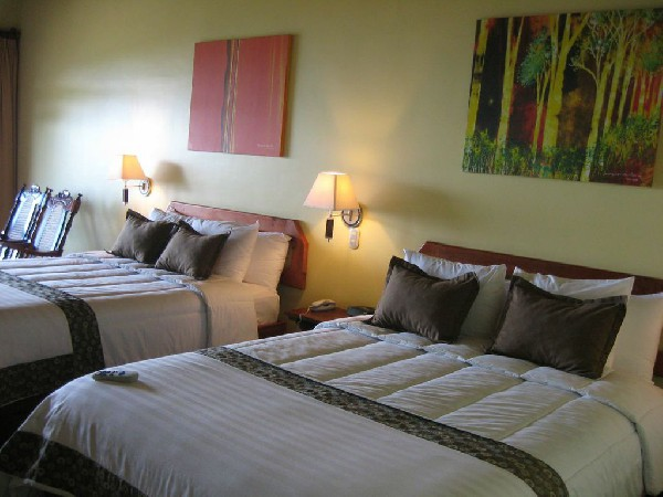 Comfortable guest rooms feature orthopedic beds and high quality linens.