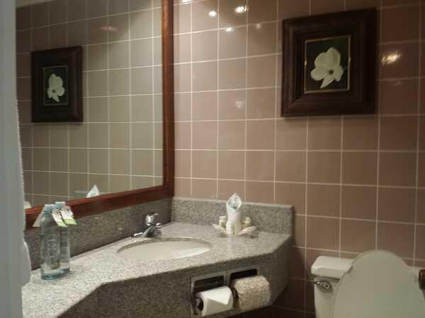The beautiful bathrooms in the Holiday Inn Aurola in San Jose, Costa Rica.