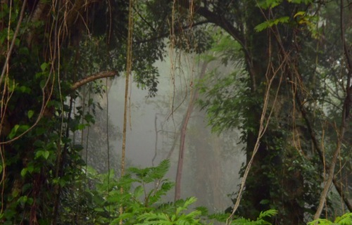 Climate News from Arenal Costa Rica