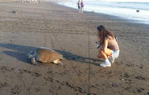Fun vacation to Playa Samara with Desafio.